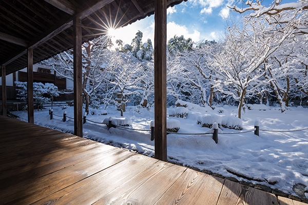 京都 冬の延光寺